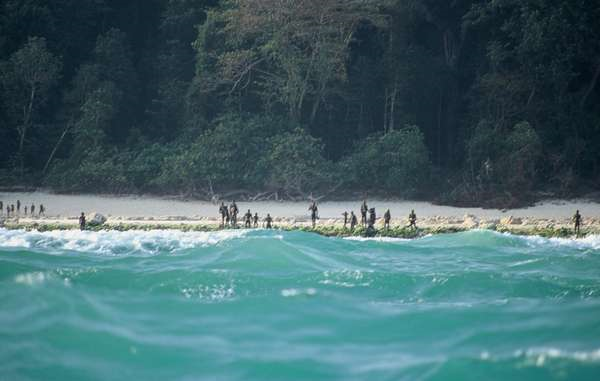 A photo taken at a distance of the Northern Sentinelese on the shore of their island.